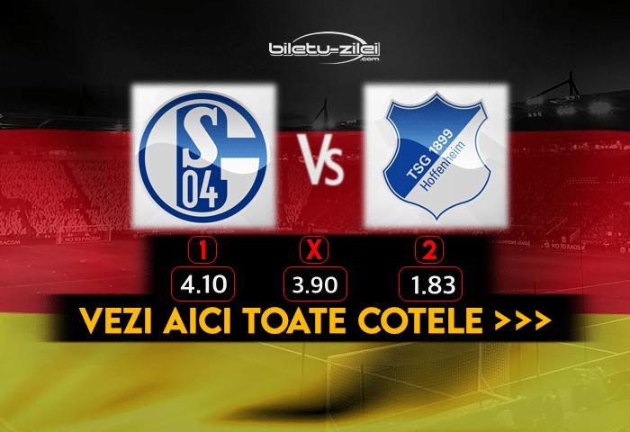 Schalke Hoffenheim Cote Pariuri 09012021