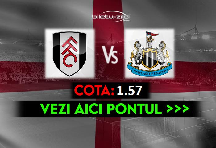 Fulham – Newcastle ponturi pariuri 23.05.2021