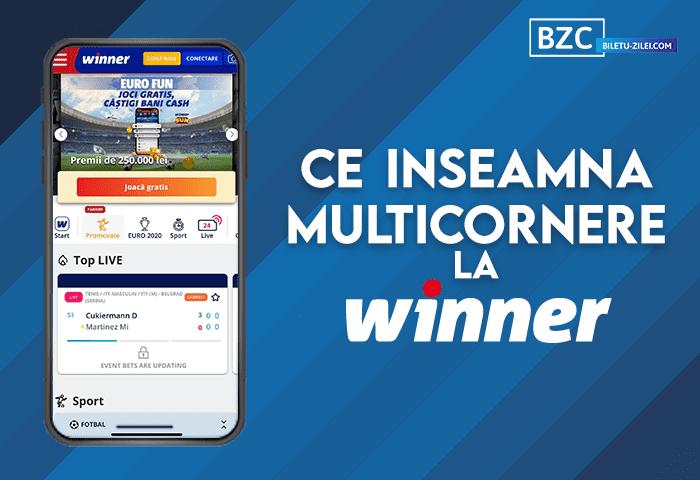 Ce înseamnă multicornere la Winner