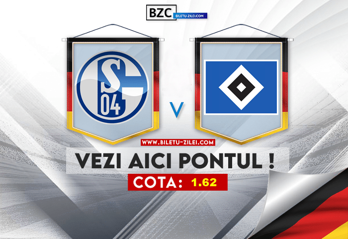 Schalke – Hamburg ponturi pariuri 23.07.2021