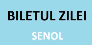 Biletul Zilei la pariuri Senol
