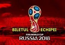 CUPA MONDIALA BILETUL ECHIPEI