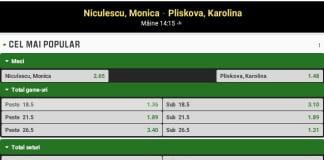 Ponturi tenis Monica Niculescu – Karolina Pliskova