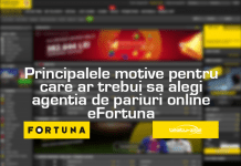 Principalele motive pentru care ar trebui sa alegi agentia de pariuri online eFortuna