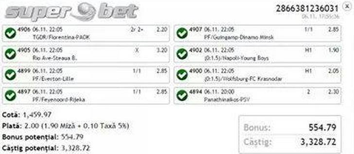 bilet castigat iulian 06.11.2014